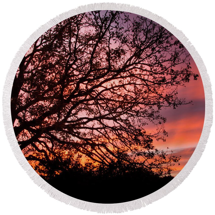 Sunset Round Beach Towel featuring the photograph Intense Sunset Tree Silhouette by Steven Jones