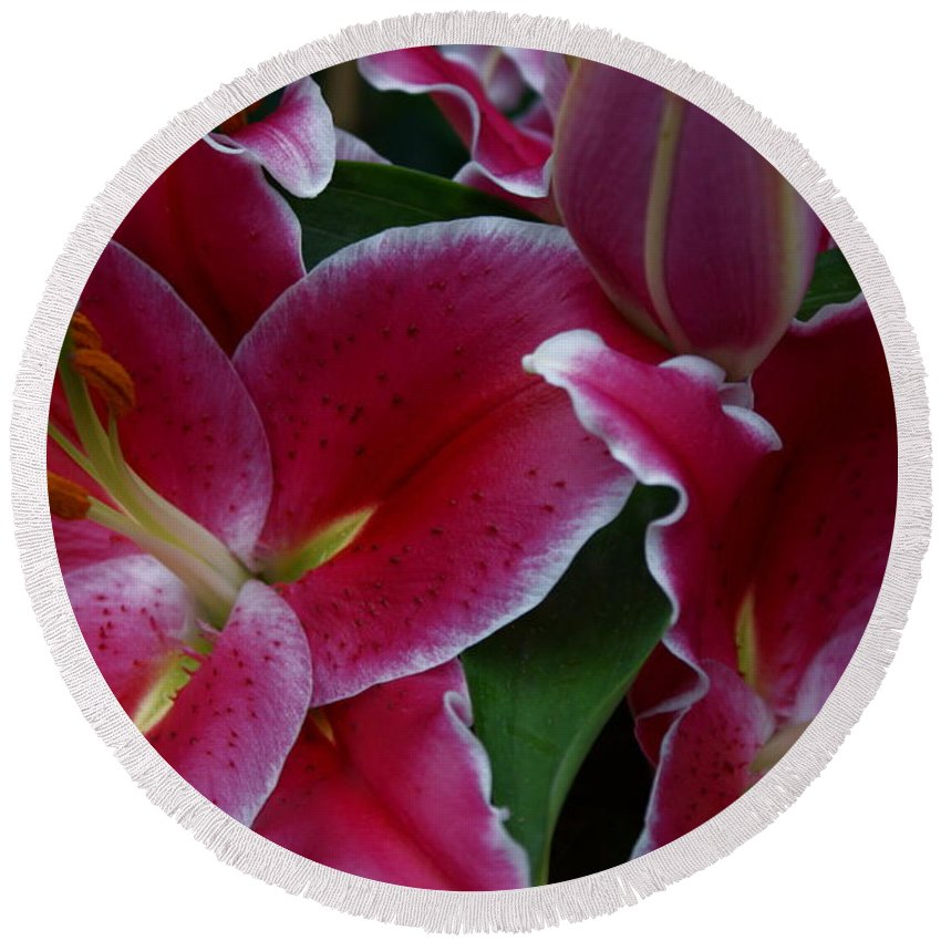 Lilies Round Beach Towel featuring the photograph Intimate by Joanne Smoley