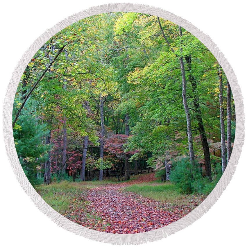 Landscape Round Beach Towel featuring the photograph Into The Forest by Todd Blanchard