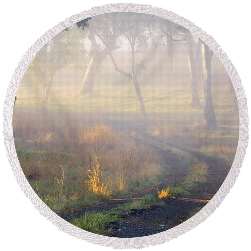 Mist Round Beach Towel featuring the photograph Into The Mist by Mike Dawson
