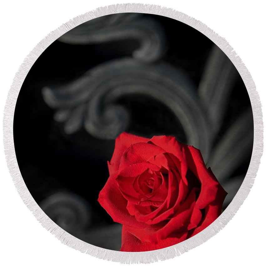 Rose Round Beach Towel featuring the photograph Intrigue by Steven Sparks