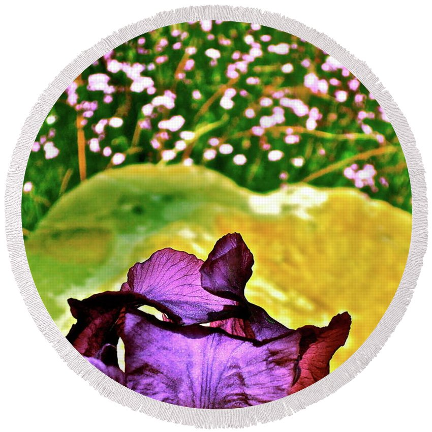 Flower Round Beach Towel featuring the photograph Iris 11 by Pamela Cooper