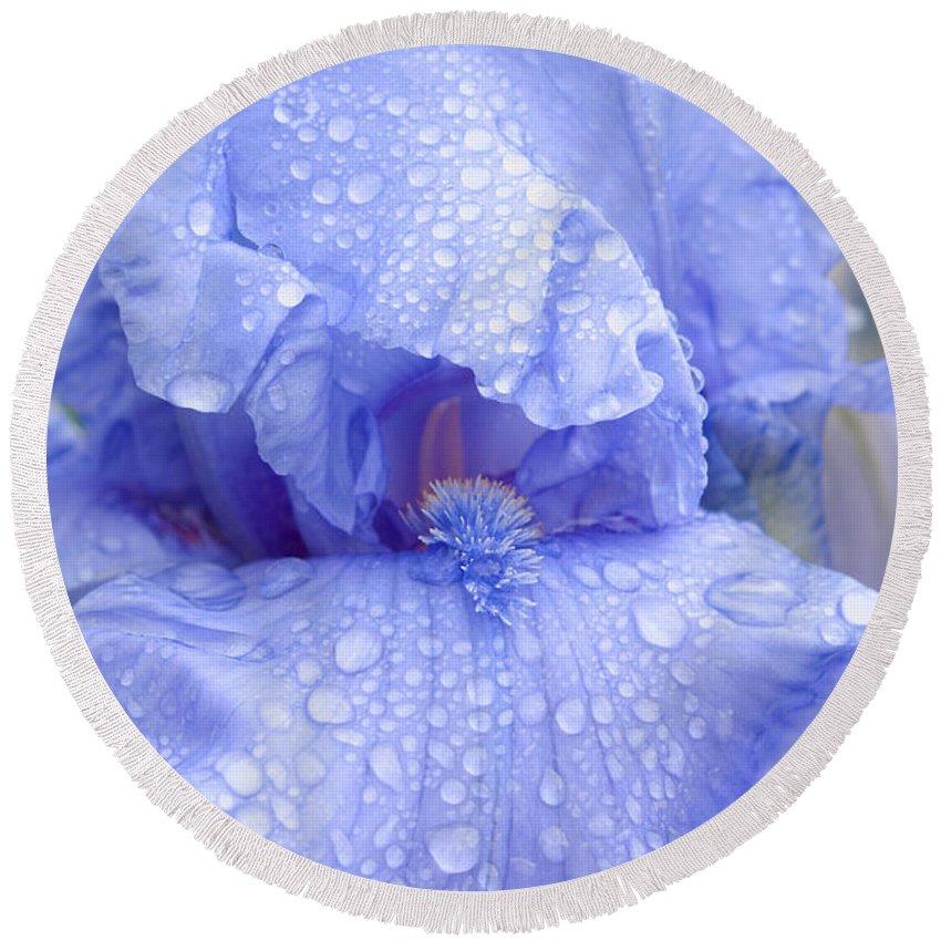 Iris Round Beach Towel featuring the photograph Iris Rainy Day Blue by Regina Geoghan