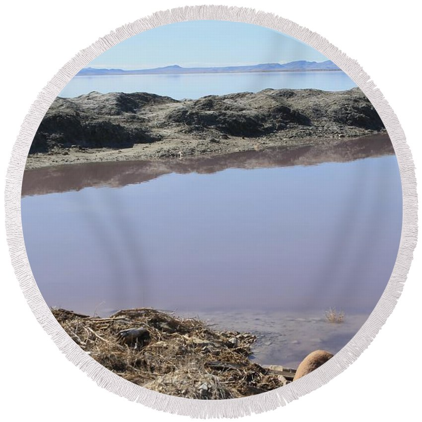 Nature Round Beach Towel featuring the photograph Island In The Desert by Tonya Hance