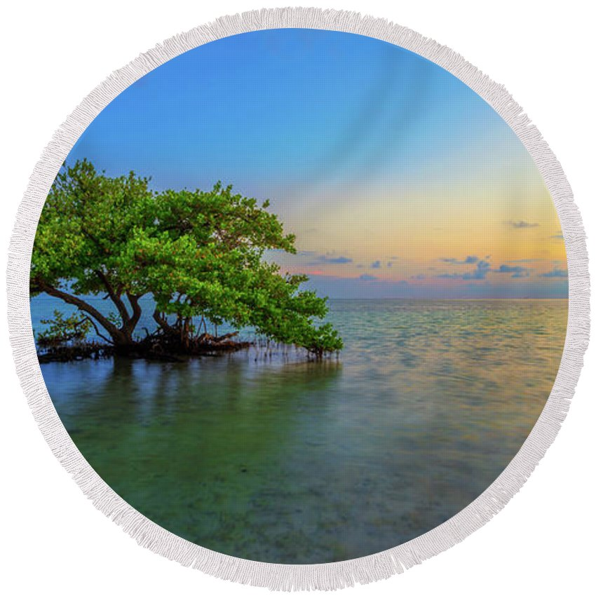 Mangrove Round Beach Towel featuring the photograph Isolation by Chad Dutson