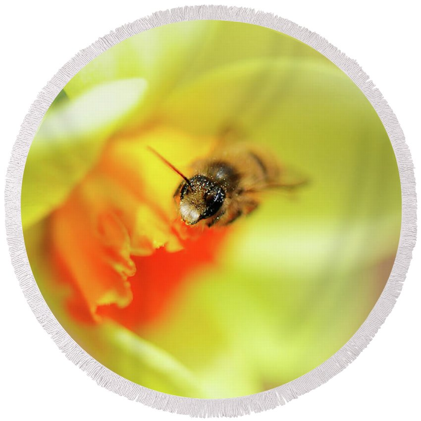 Bee Round Beach Towel featuring the photograph It Just Wouldn't Bee Spring Without ... by Lois Bryan