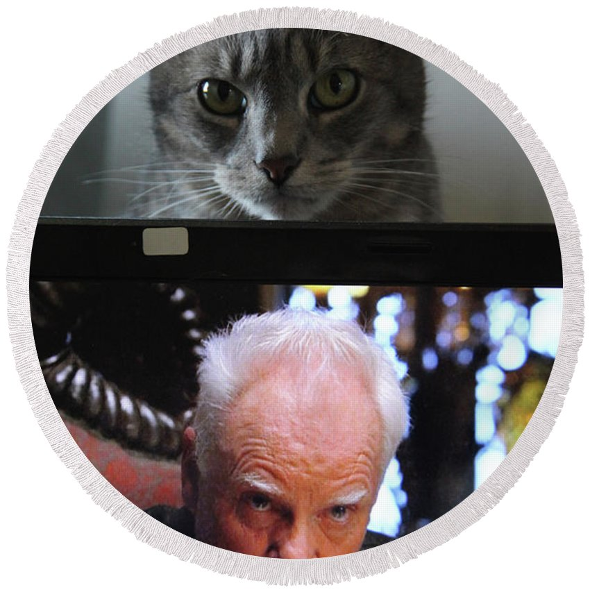 Cats Round Beach Towel featuring the photograph I've Seen This Before by Guy Ciarcia