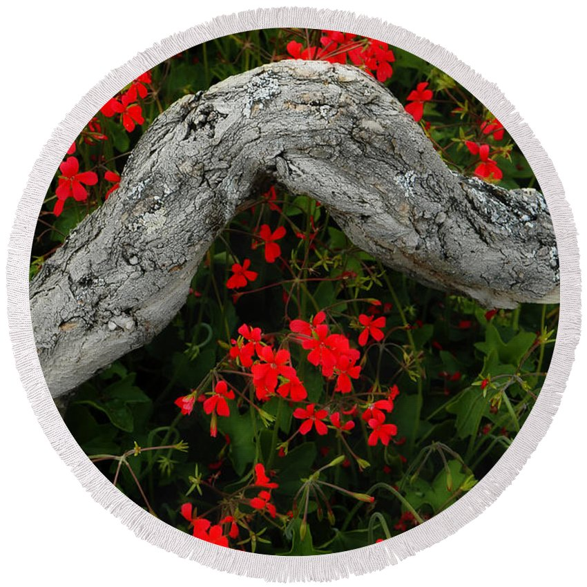 Geranium Round Beach Towel featuring the photograph Ivy Geraniums And Log by Mike Nellums