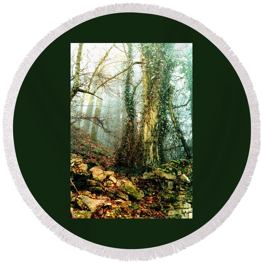Ivy Round Beach Towel featuring the photograph Ivy In The Woods by Nancy Mueller