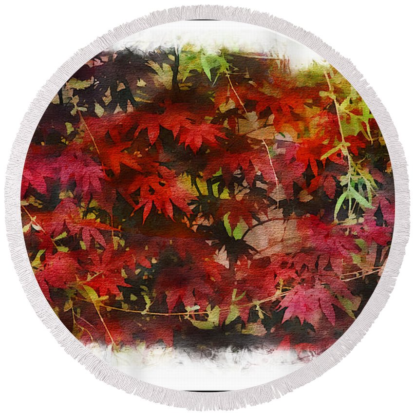 Japanese Maple Round Beach Towel featuring the photograph Japanese Maple Under The Willow by Ericamaxine Price
