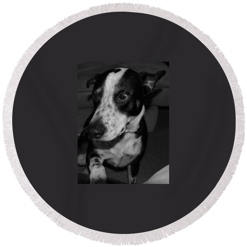Black And White Round Beach Towel featuring the photograph Jimmy by Rob Hans