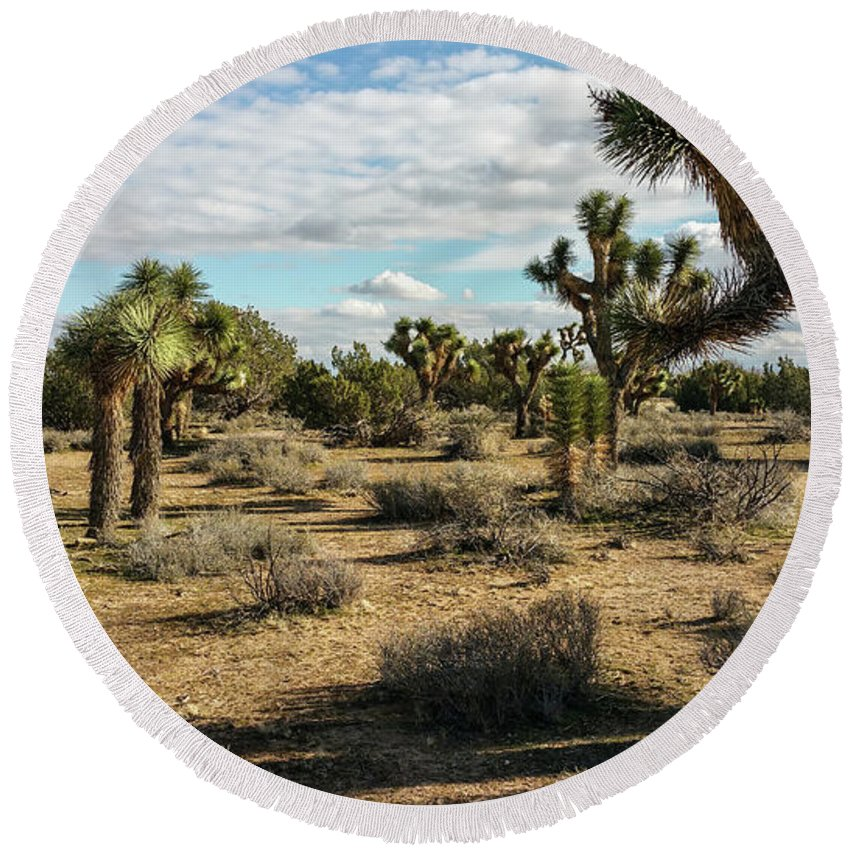 Alone Round Beach Towel featuring the photograph Joshua Tree's by Joe Lach