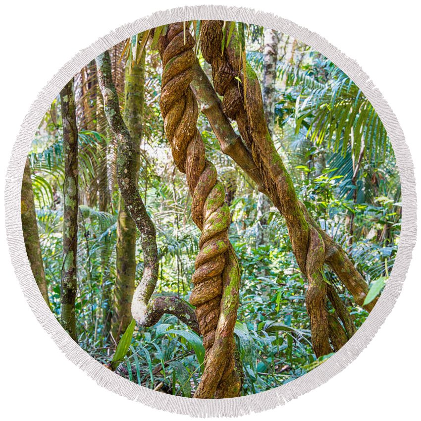 Jungle Round Beach Towel featuring the photograph Jungle Vines by Jess Kraft