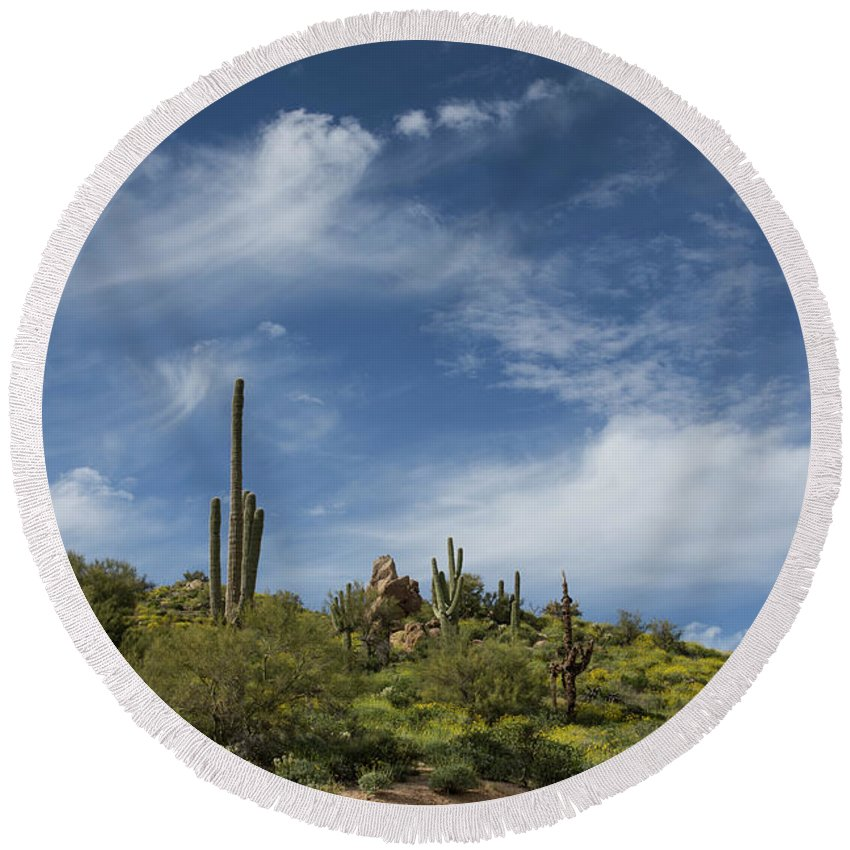 Arizona Round Beach Towel featuring the photograph Just A Whisper by Cathy Franklin