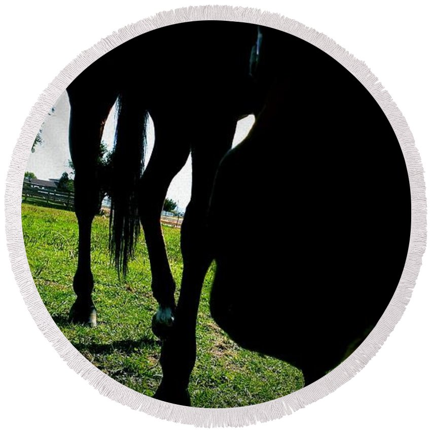 Horses Round Beach Towel featuring the photograph Just Let Me Smell It by LKB Art and Photography