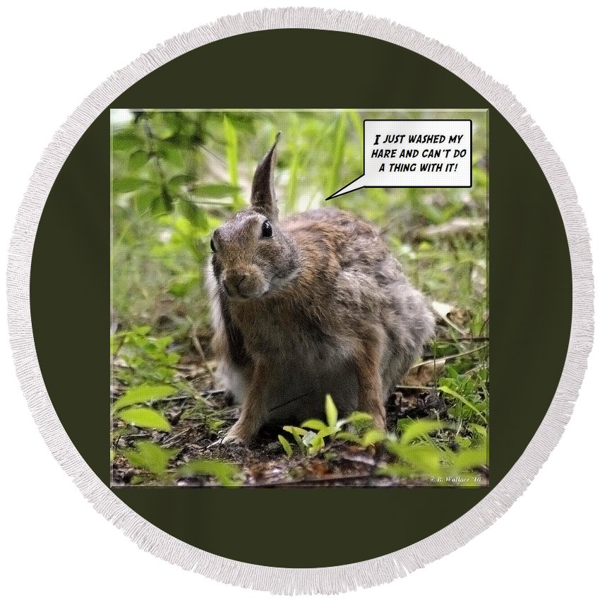 2d Round Beach Towel featuring the photograph Just Washed My Hare by Brian Wallace