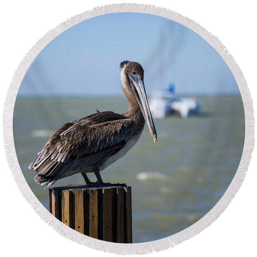 Key Largo Round Beach Towel featuring the photograph Key Largo Florida Pelican Yacht by Toby McGuire