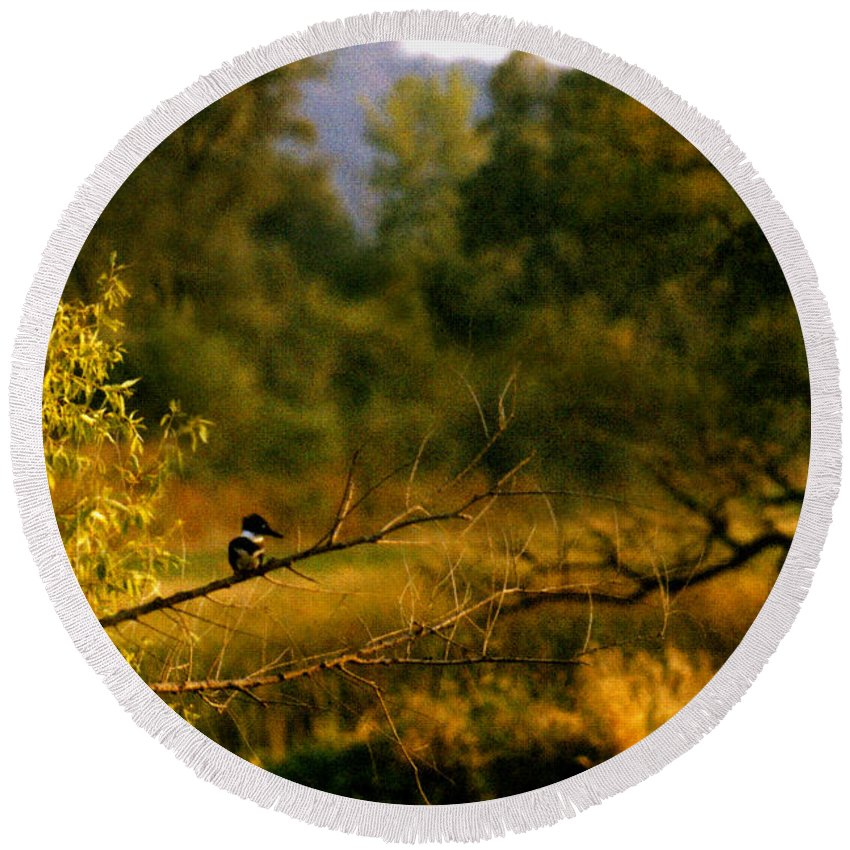 Landscape Round Beach Towel featuring the photograph King Fisher by Steve Karol