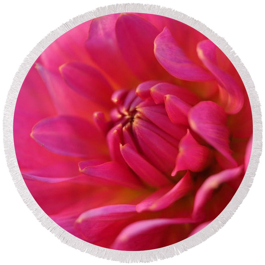 Close Up Round Beach Towel featuring the photograph Kiss Of Pink by Beth Collins