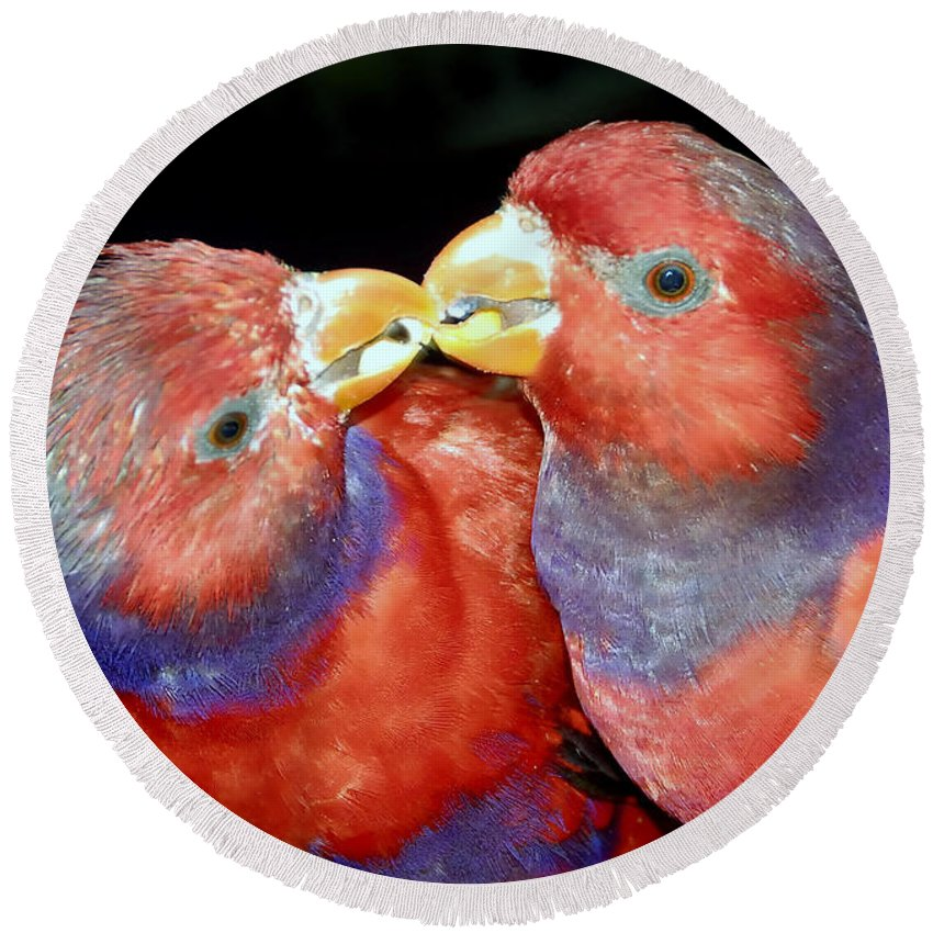 Kissing Round Beach Towel featuring the photograph Kissing Birds by David Lee Thompson