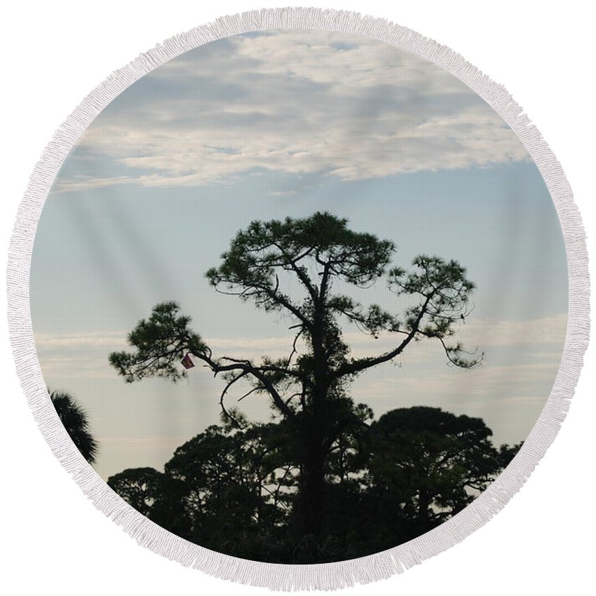 Kite Round Beach Towel featuring the photograph Kite In The Tree by Rob Hans