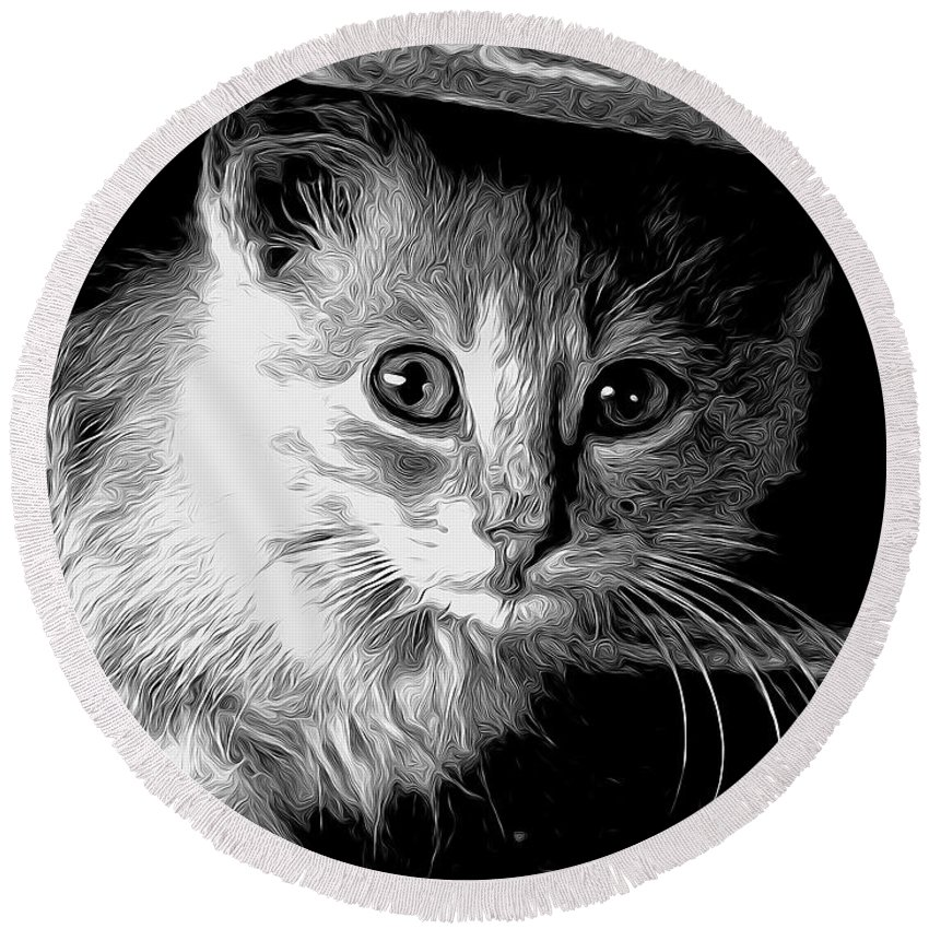 Cat Round Beach Towel featuring the photograph Kitty In Black White by Shannon Story