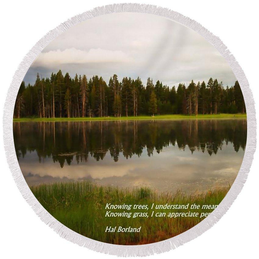 Quotes Round Beach Towel featuring the photograph Knowing Trees by Jeff Swan