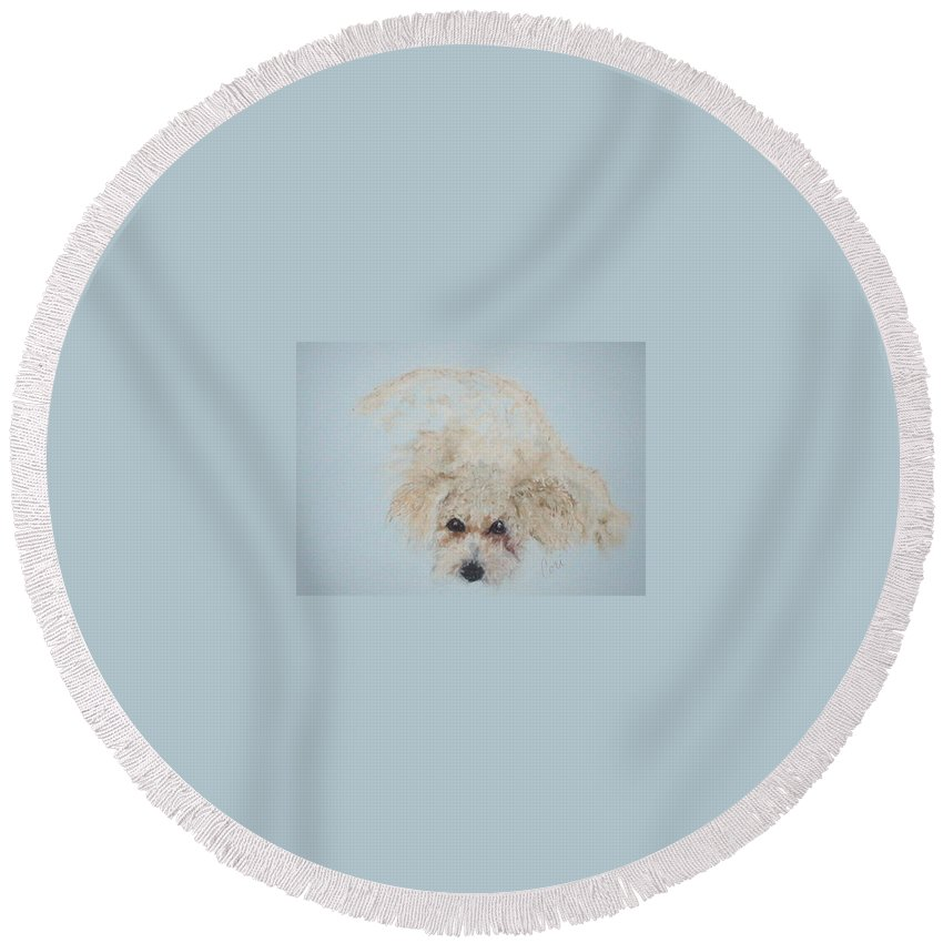 Dog Round Beach Towel featuring the drawing Kuku by Cori Solomon