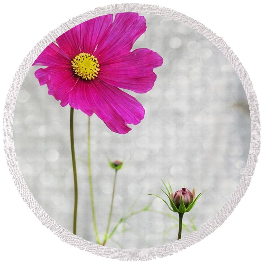 Flower Round Beach Towel featuring the photograph L Elancee by Variance Collections