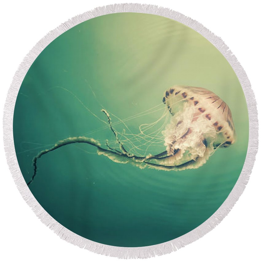 Nature Round Beach Towel featuring the photograph Lady Jellyfish by Giuseppe Esposito