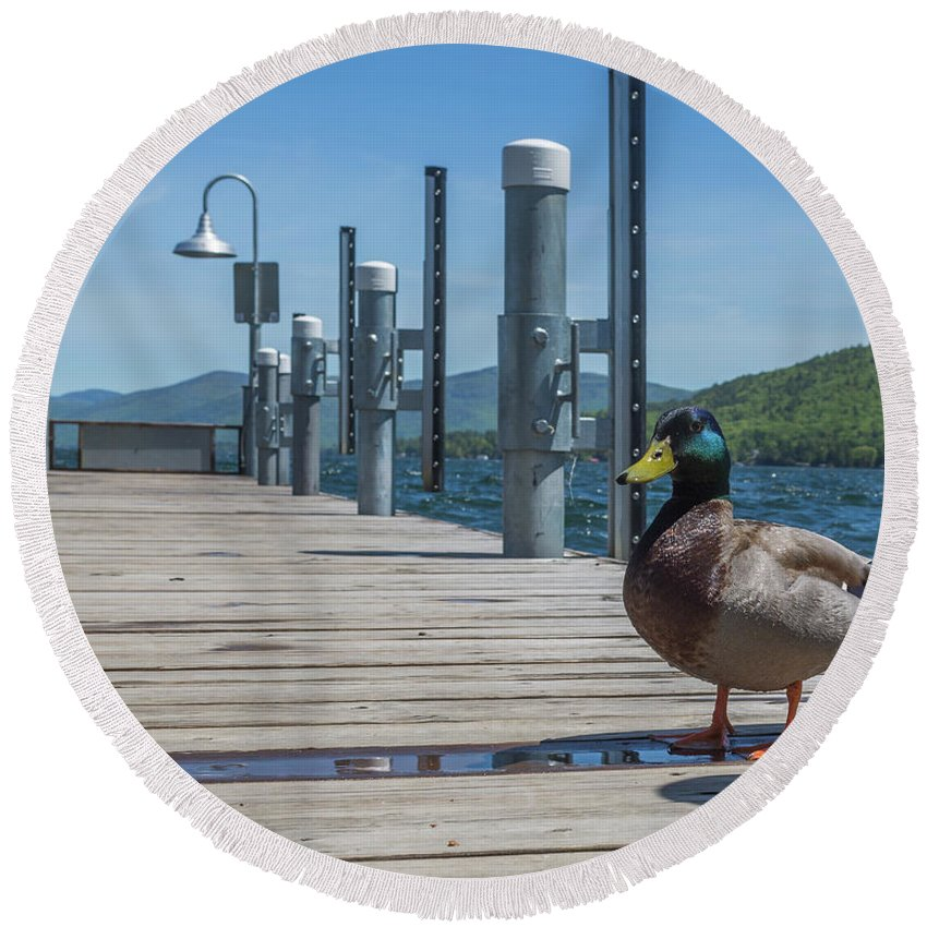 Lake George Round Beach Towel featuring the photograph Lake George Duck by Sean Comiskey
