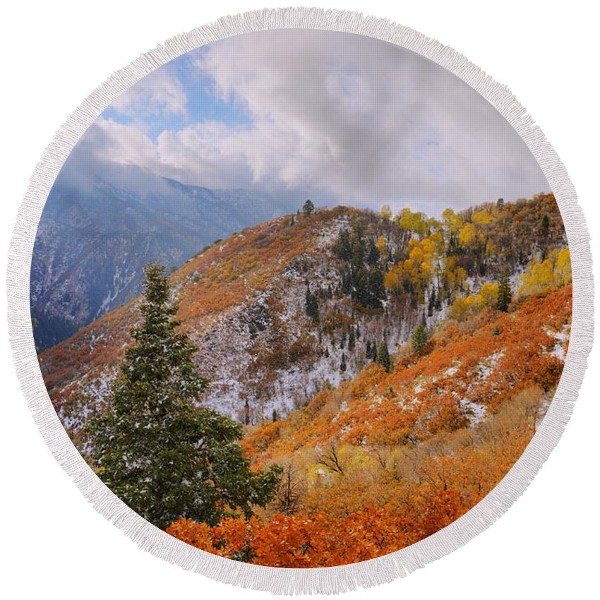Forest Round Beach Towel featuring the photograph Last Fall by Chad Dutson