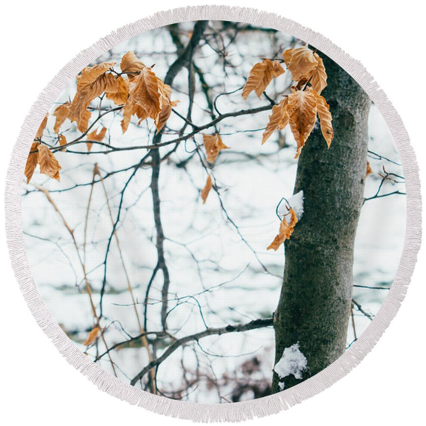 Orange Round Beach Towel featuring the photograph Last Snowy Leaves by Pati Photography