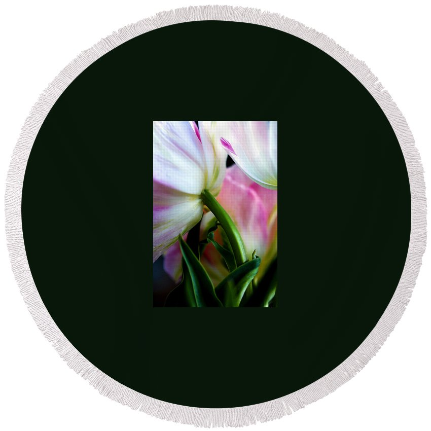 Flower Round Beach Towel featuring the photograph Layers of Tulips by Marilyn Hunt