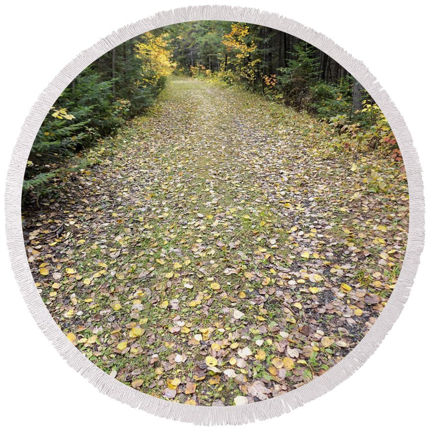 Trail Round Beach Towel featuring the photograph Leaf-strewn Trail by William Tasker