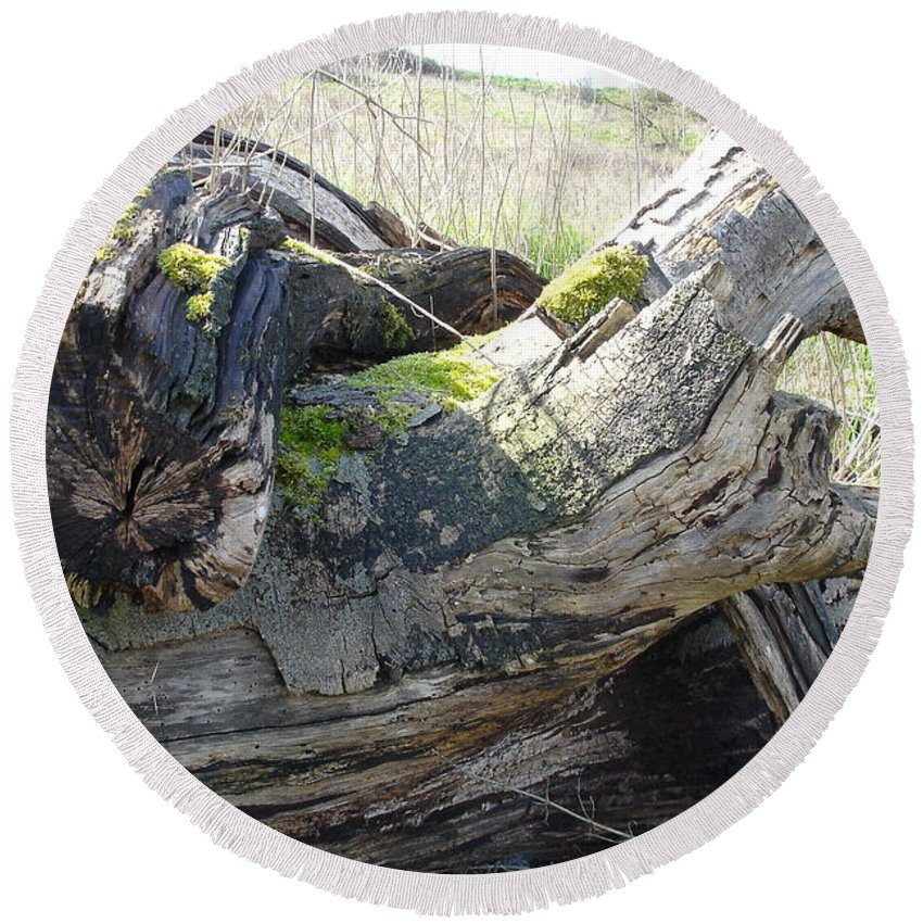 Tree Round Beach Towel featuring the photograph Leave Us Be by Susan Baker
