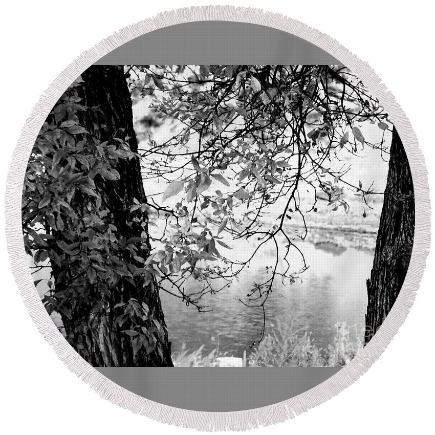 Tree Round Beach Towel featuring the photograph Leaves Over The River by Curtis Tilleraas