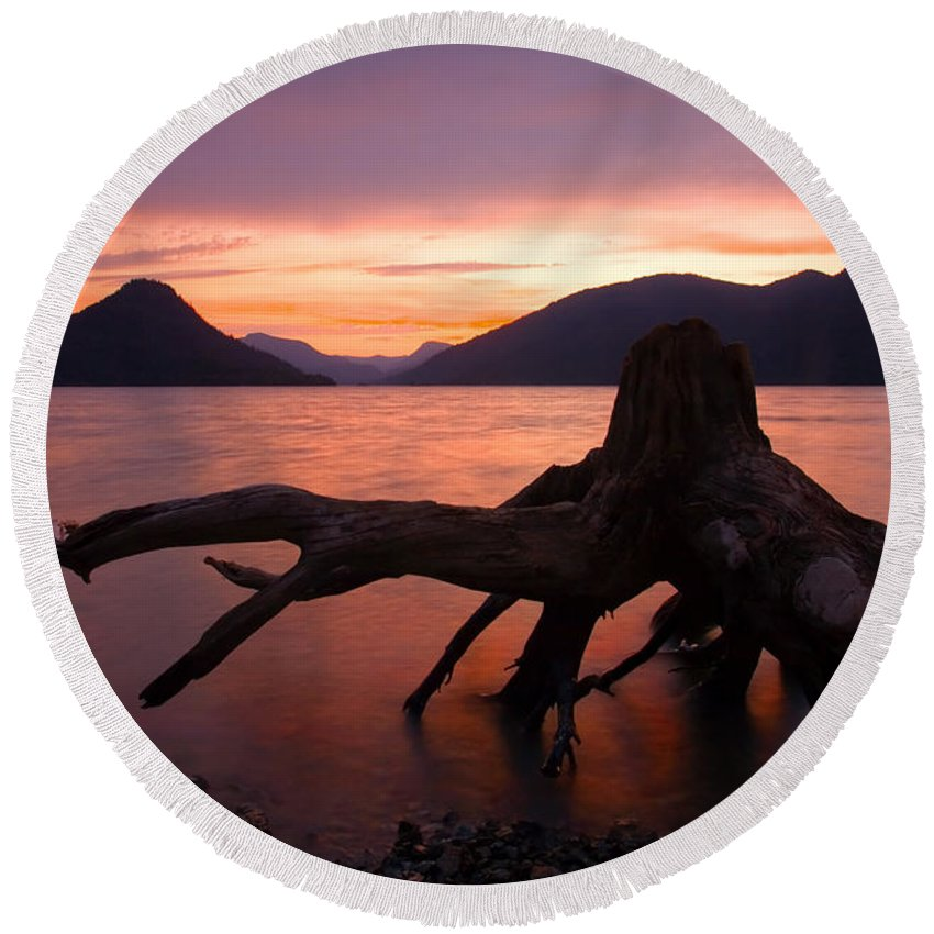 Stump Round Beach Towel featuring the photograph Left Behind by Mike Dawson