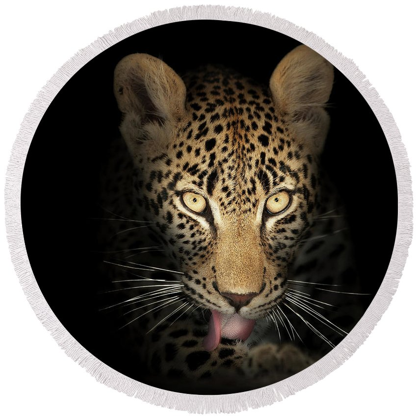 Leopard Round Beach Towel featuring the photograph Leopard In The Dark by Johan Swanepoel