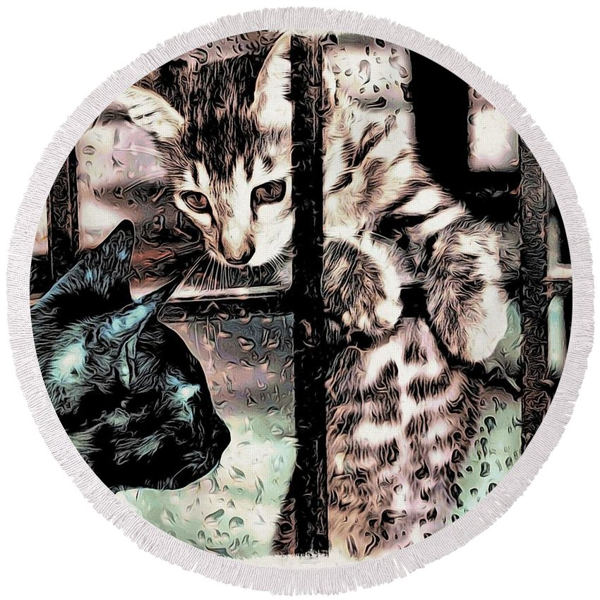 Cats Round Beach Towel featuring the digital art Let Me In by Bliss Of Art