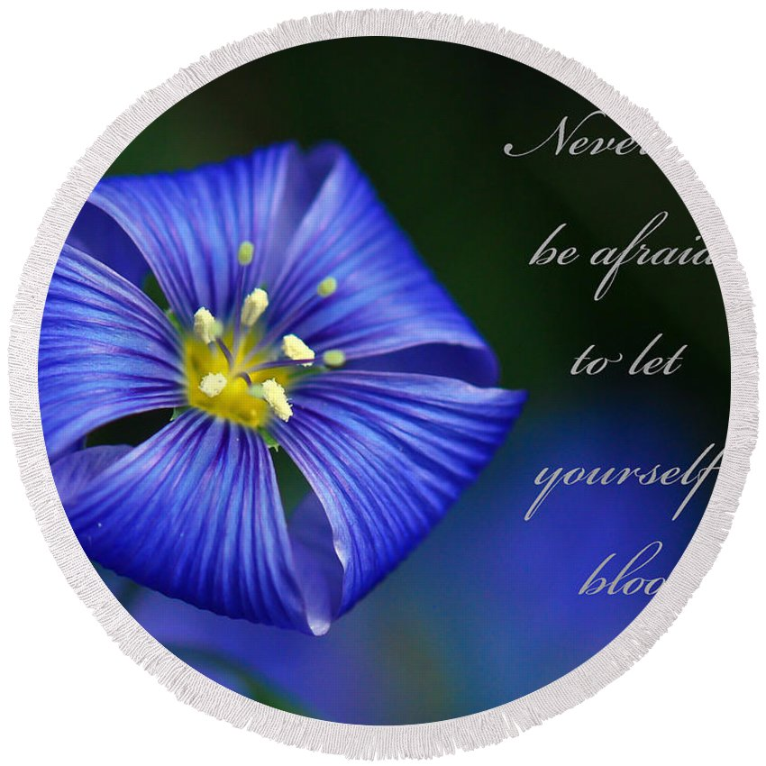 Blue Flax Flower Round Beach Towel featuring the photograph Let Yourself Bloom by Kerri Farley