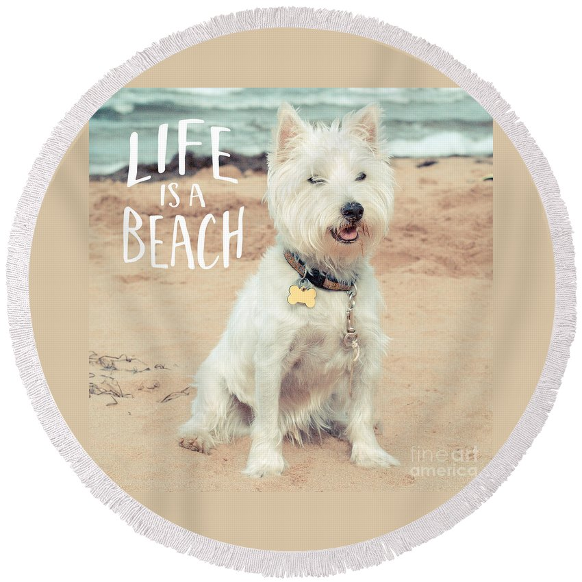 Dog Round Beach Towel featuring the photograph Life Is A Beach Dog Square by Edward Fielding
