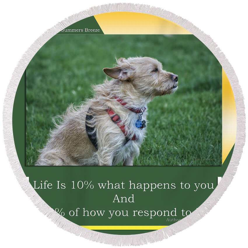 Dog Round Beach Towel featuring the mixed media Life Is A Warm Summers Breeze by Thomas Woolworth