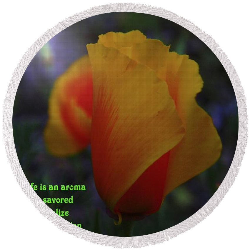 Poppy Round Beach Towel featuring the photograph Life Is An Aroma by Jeff Swan