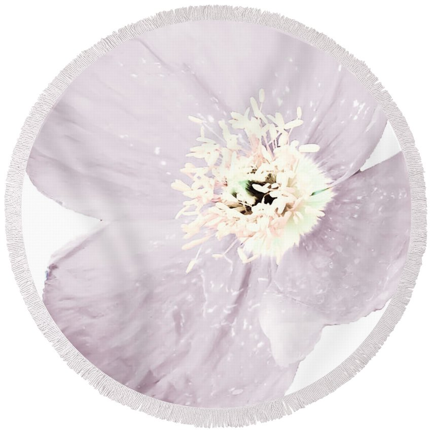 Light Round Beach Towel featuring the photograph Light Dusty Lavender Poppy by Heather Joyce Morrill