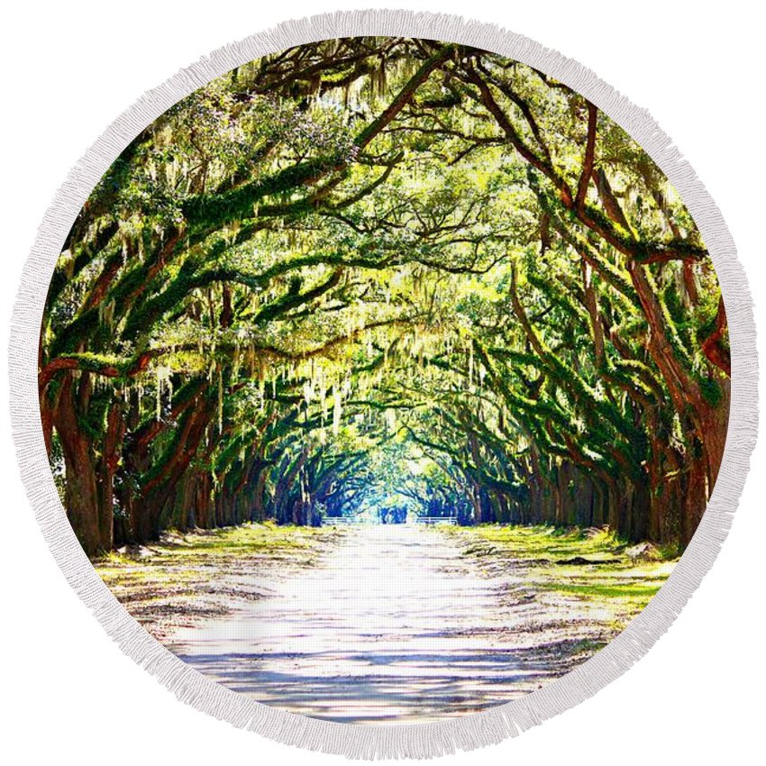 Landscape Round Beach Towel featuring the photograph Light Through Live Oak Lane by Carol Groenen