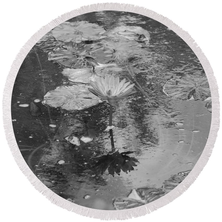 Lilly Pond Round Beach Towel featuring the photograph Lilly Pond by Rob Hans