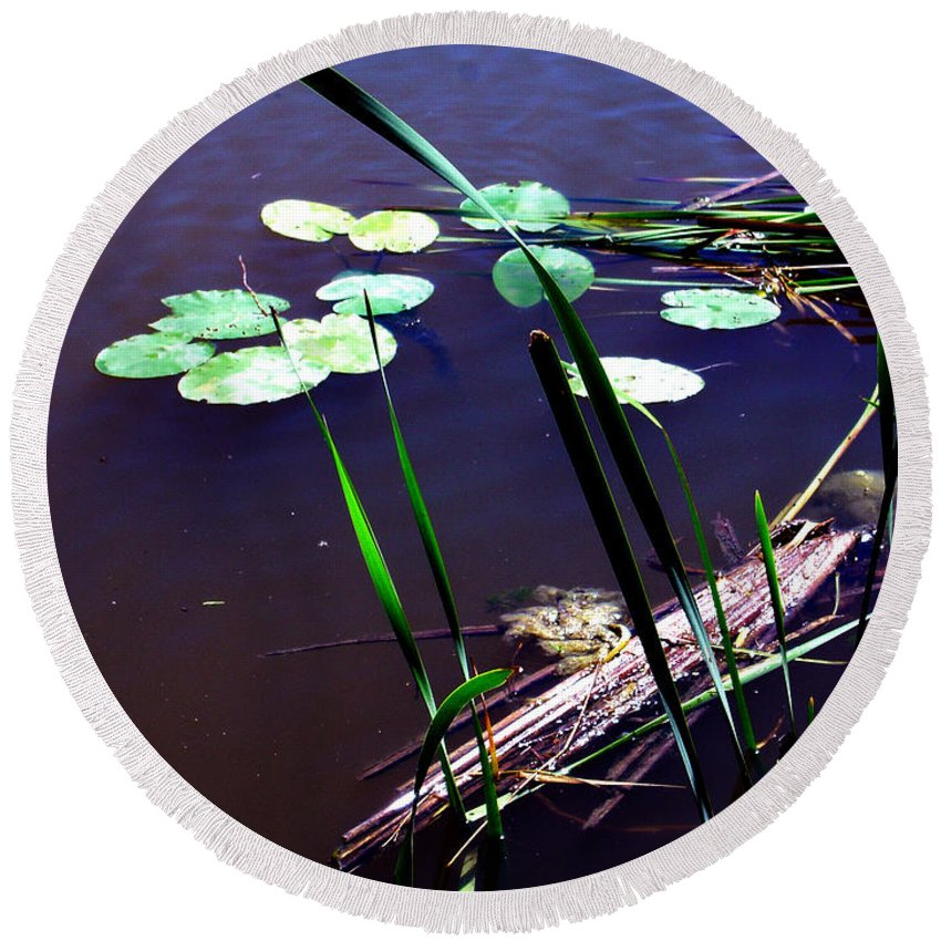 Reeds And Lily Pads Round Beach Towel featuring the photograph Lily Pads And Reeds by Joanne Smoley