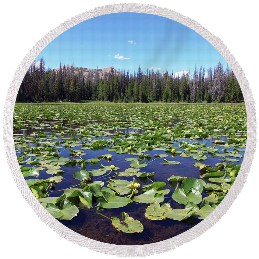 Lily Pond In The Uinta's Round Beach Towel featuring the photograph Lily Pond by Julie Tanner
