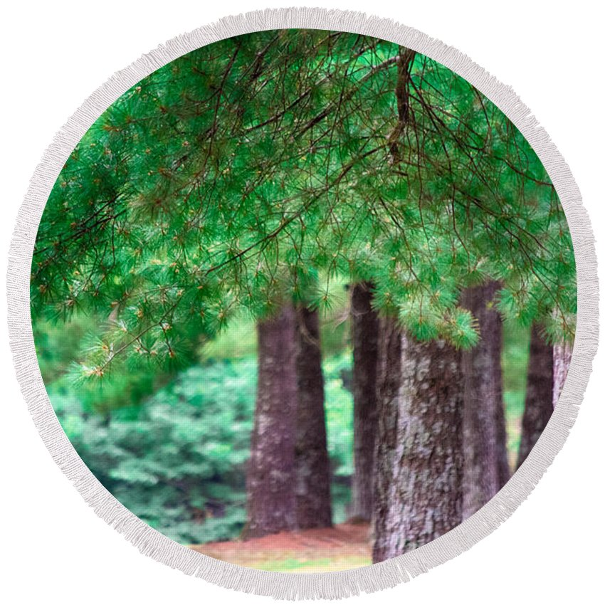 Southern Illinois Round Beach Towel featuring the photograph Line Of Pines by John Diebolt